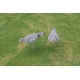 Flocked Pigeon Shell Decoy (Pack of Six)