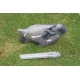 Pigeon Shell Decoys (12 Pack)